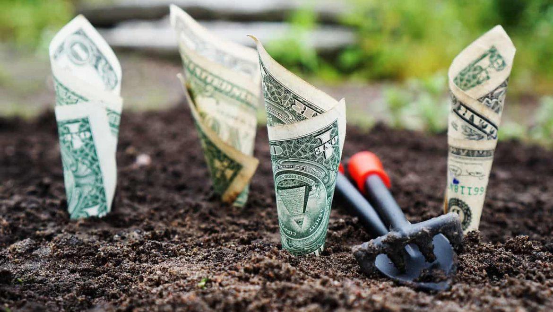 דברים שחשוב לדעת על השקעת הכסף שלנו